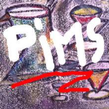 Il metodo PIMS